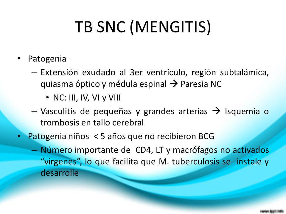 TB SNC (MENGITIS) Patogenia