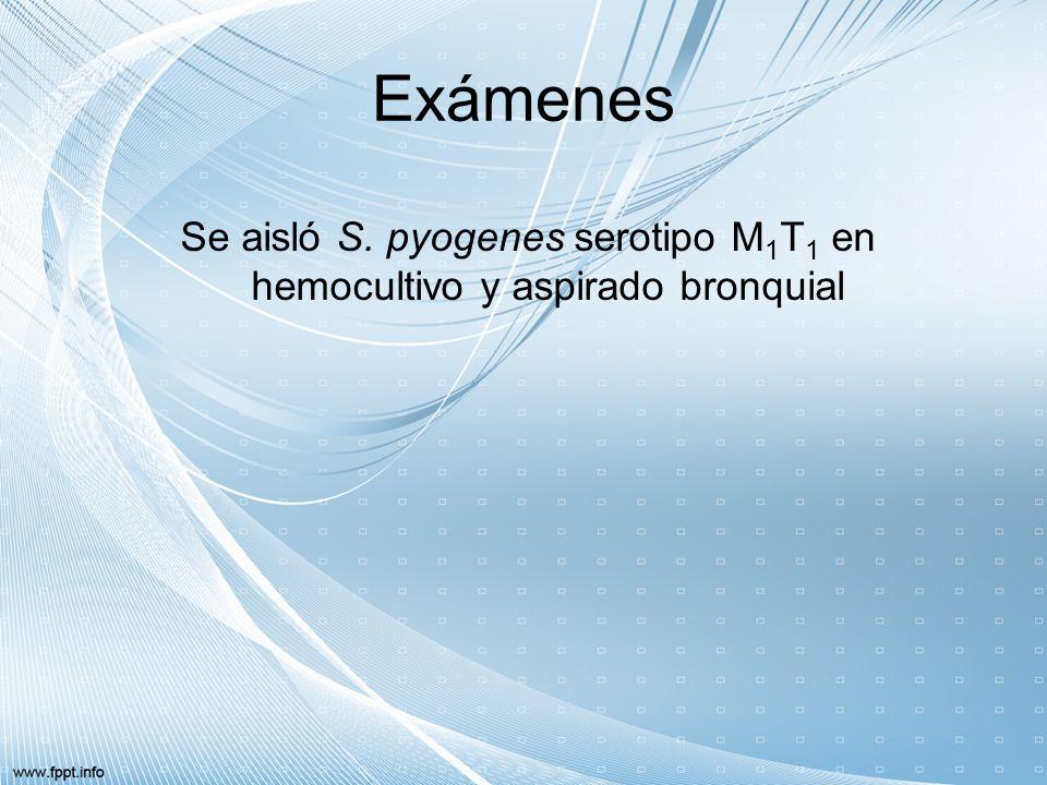 Se aisló S. pyogenes serotipo M1T1 en hemocultivo y aspirado bronquial