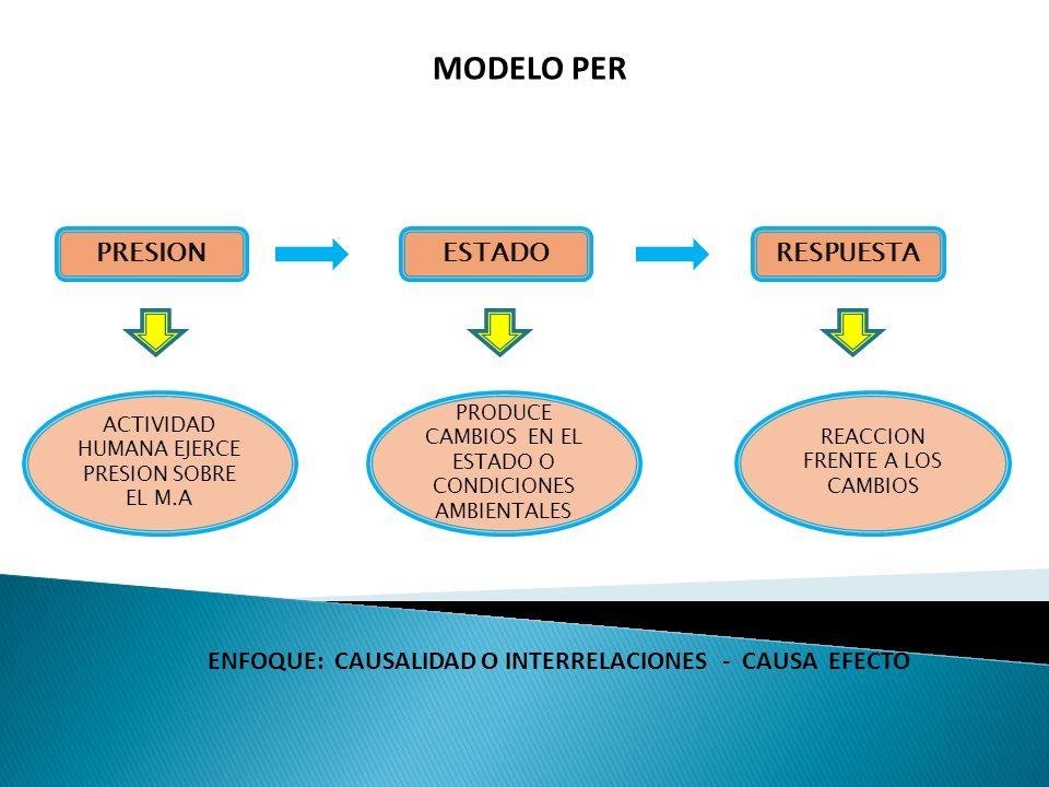 MODELO PER PRESION ESTADO RESPUESTA