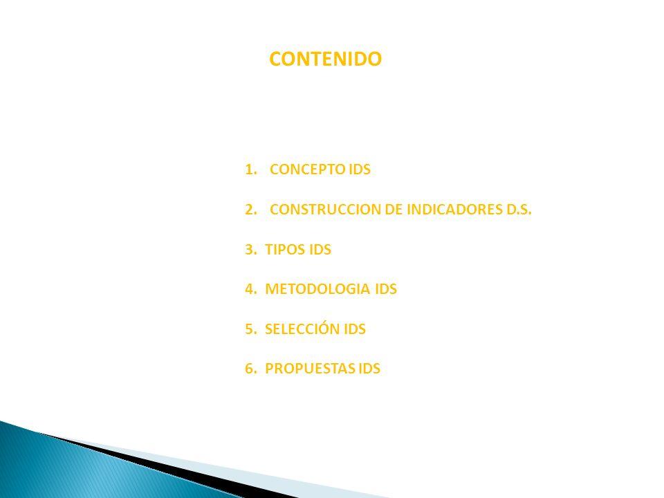 CONTENIDO CONCEPTO IDS CONSTRUCCION DE INDICADORES D.S. 3. TIPOS IDS