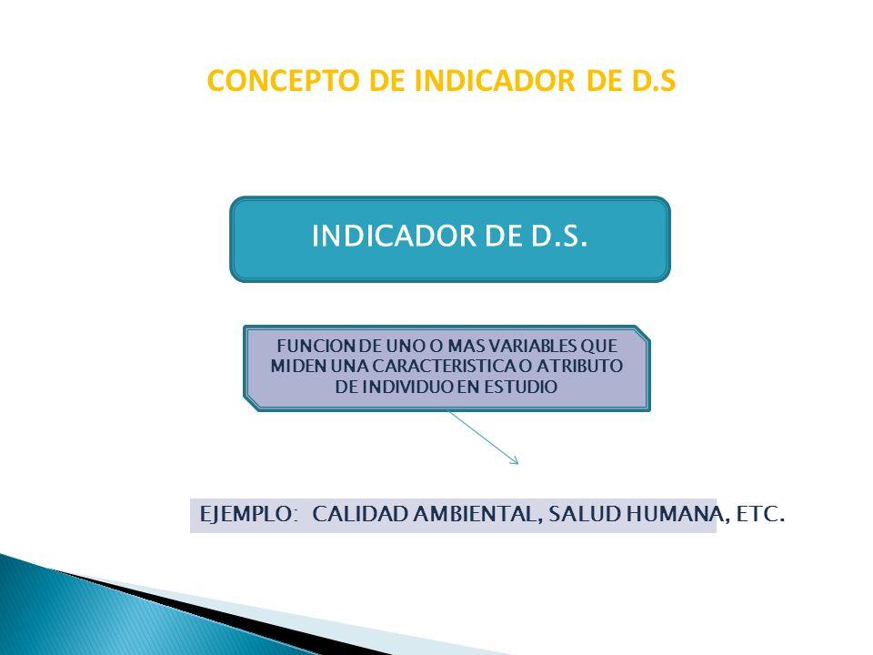 CONCEPTO DE INDICADOR DE D.S