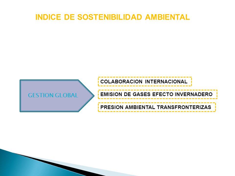 INDICE DE SOSTENIBILIDAD AMBIENTAL