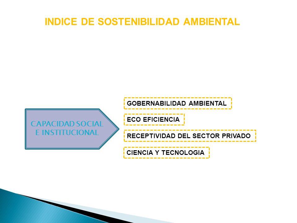 CAPACIDAD SOCIAL E INSTITUCIONAL