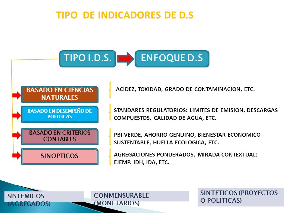 TIPO DE INDICADORES DE D.S