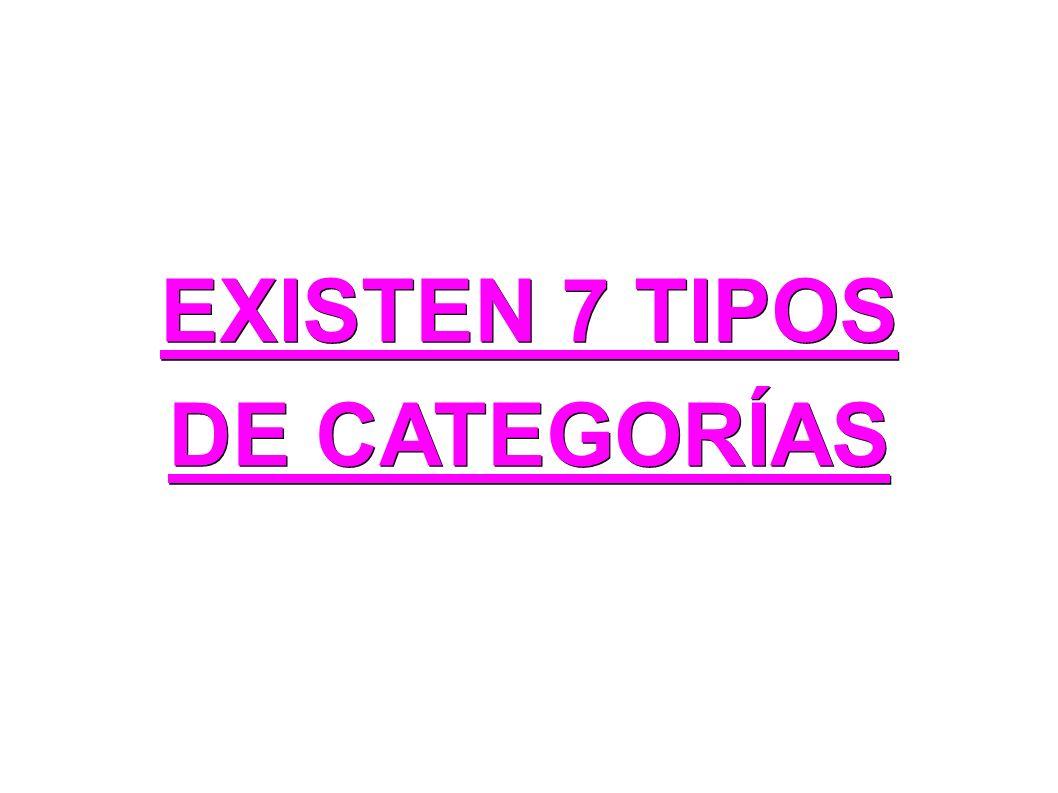 EXISTEN 7 TIPOS DE CATEGORÍAS
