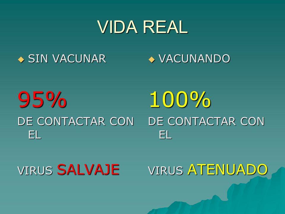 95% 100% VIDA REAL SIN VACUNAR DE CONTACTAR CON EL VIRUS SALVAJE