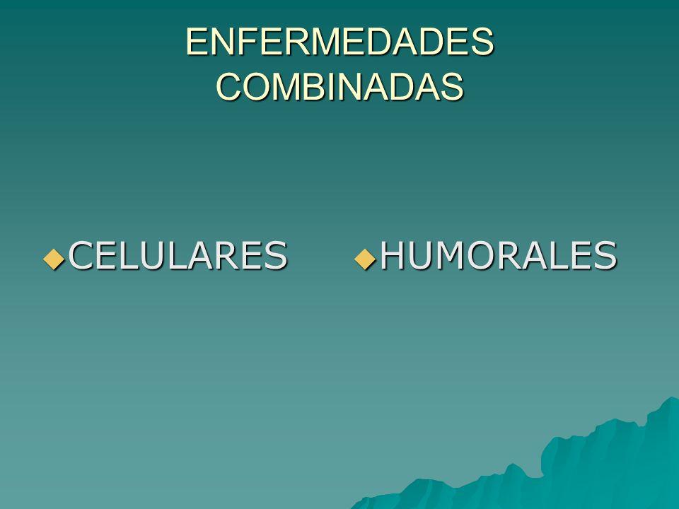 ENFERMEDADES COMBINADAS