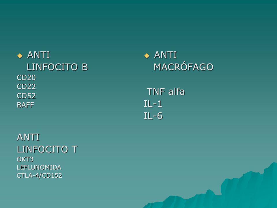 ANTI LINFOCITO B LINFOCITO T ANTI MACRÓFAGO TNF alfa IL-1 IL-6 CD20