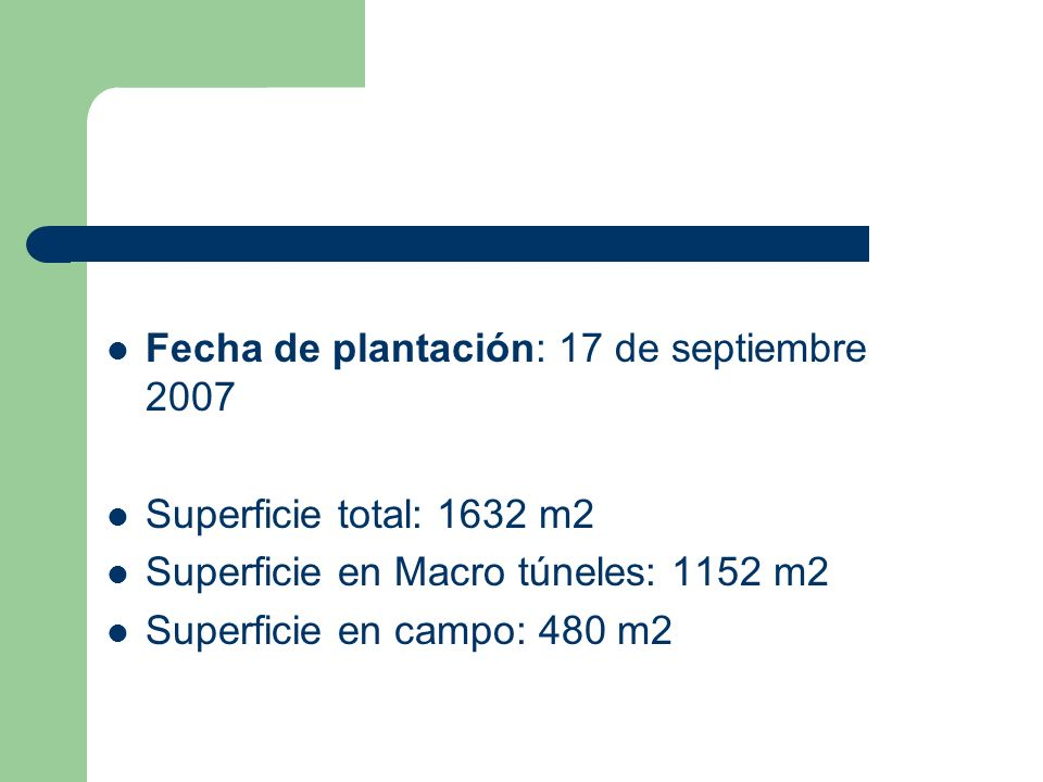 Fecha de plantación: 17 de septiembre 2007
