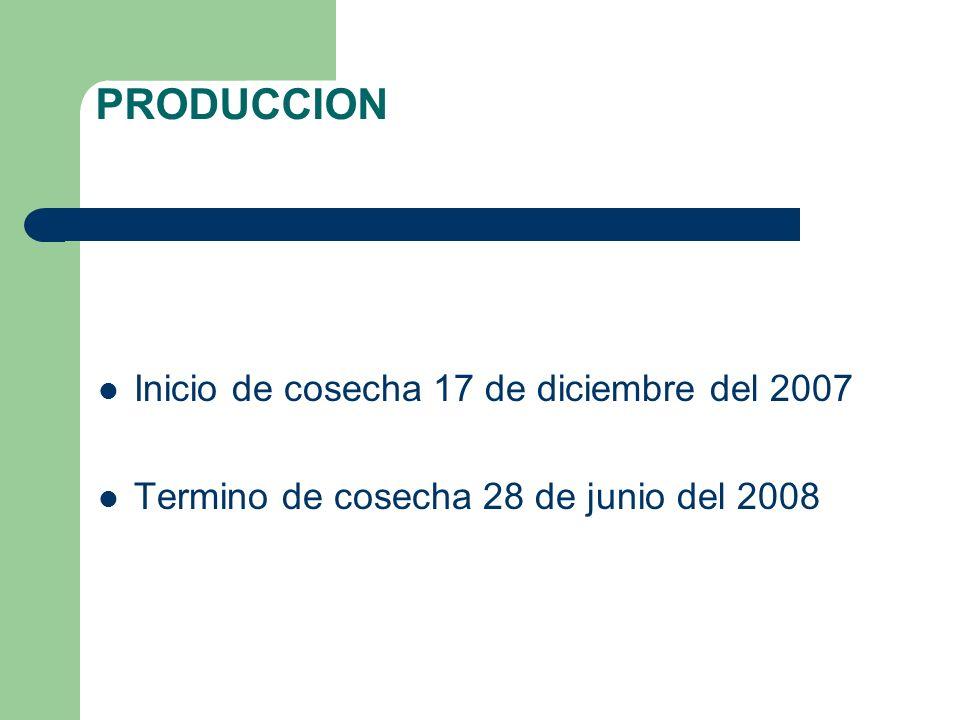 PRODUCCION Inicio de cosecha 17 de diciembre del 2007