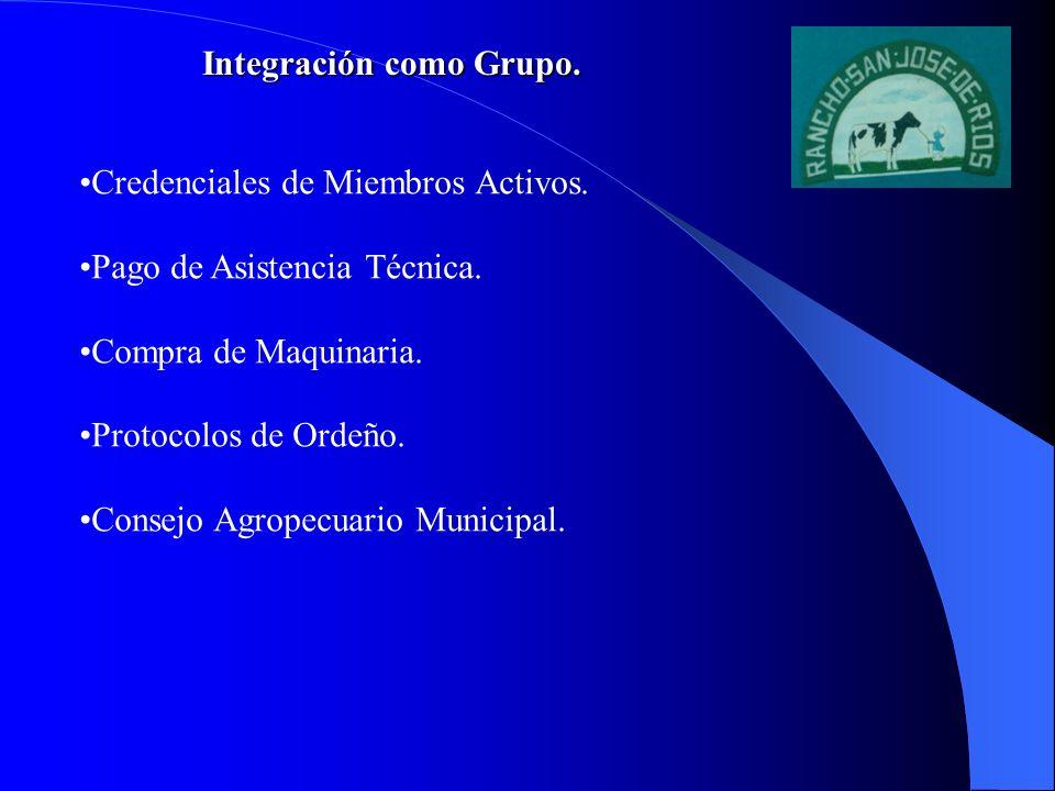 Integración como Grupo.