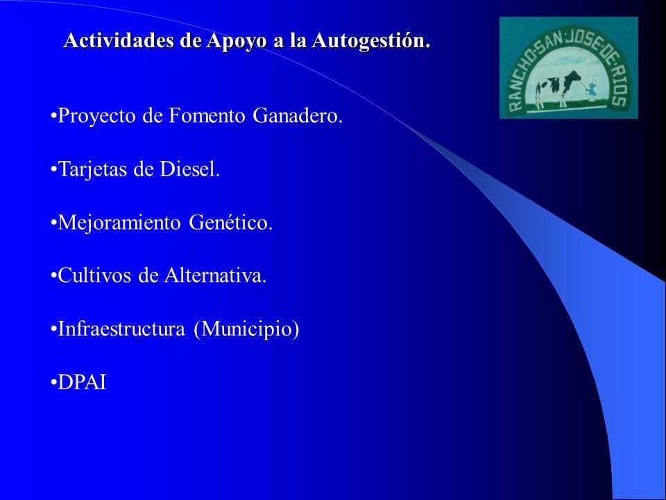 Actividades de Apoyo a la Autogestión.