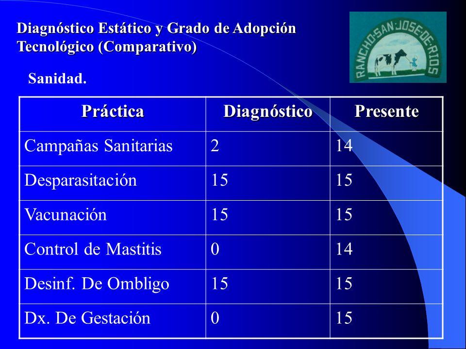 Práctica Diagnóstico Presente