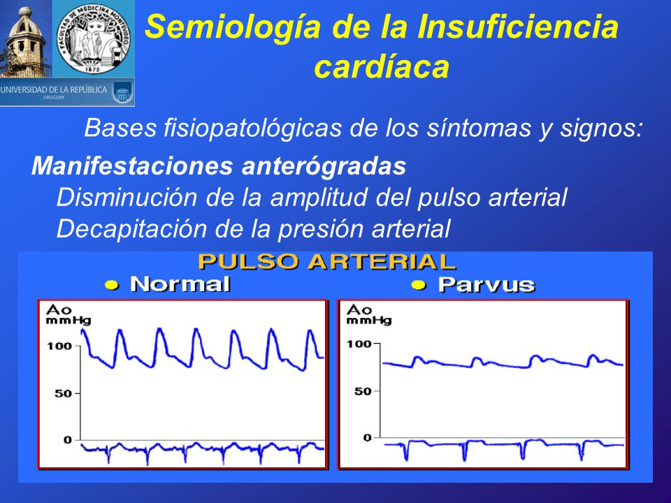 CIMI Curso de Semiología Médica - ppt video online descargar