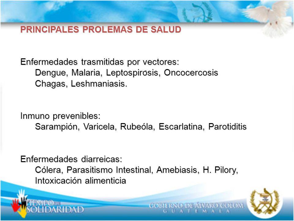 PRINCIPALES PROLEMAS DE SALUD