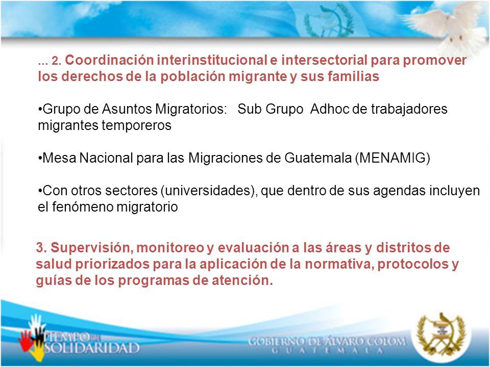 Mesa Nacional para las Migraciones de Guatemala (MENAMIG)