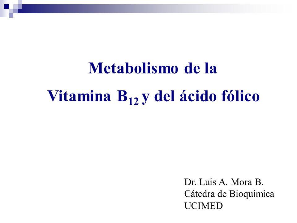 Vitamina B12 y del ácido fólico