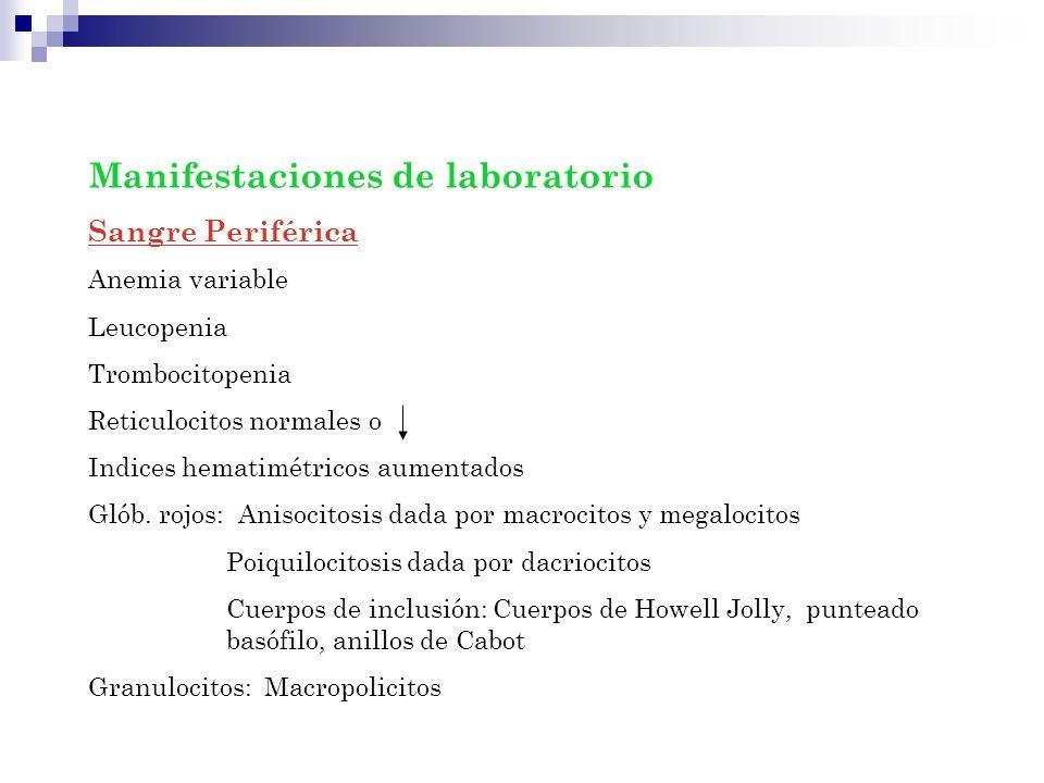 Manifestaciones de laboratorio