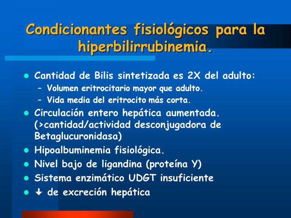 Condicionantes fisiológicos para la hiperbilirrubinemia.