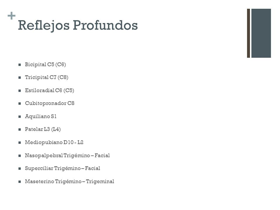 Reflejos Profundos Bicipital C5 (C6) Tricipital C7 (C8)