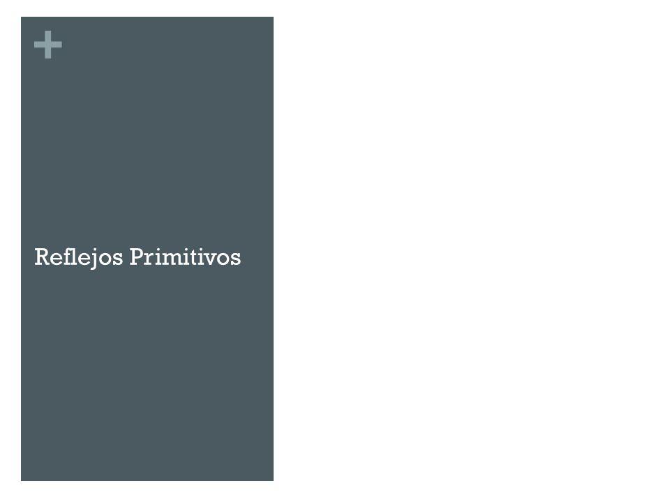 Reflejos Primitivos