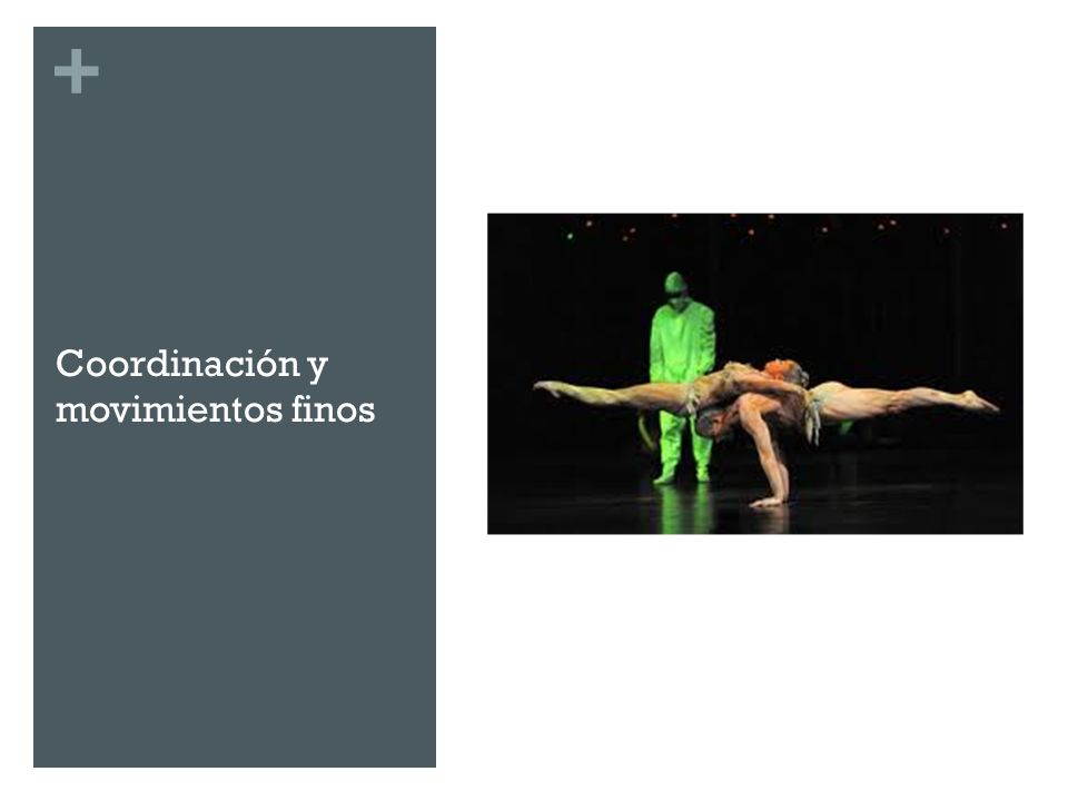 Coordinación y movimientos finos