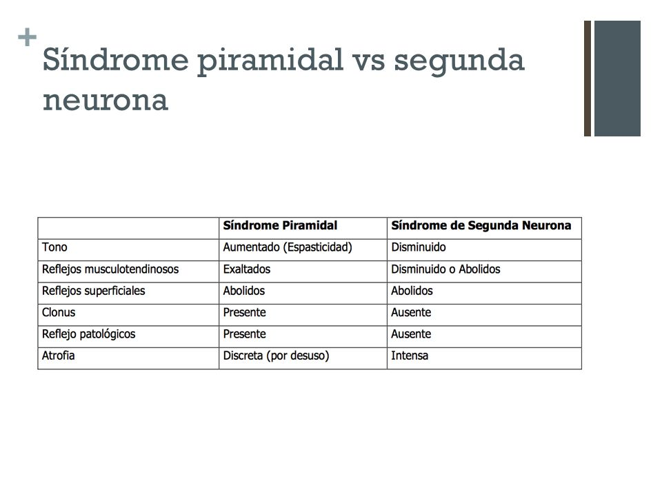 Síndrome piramidal vs segunda neurona