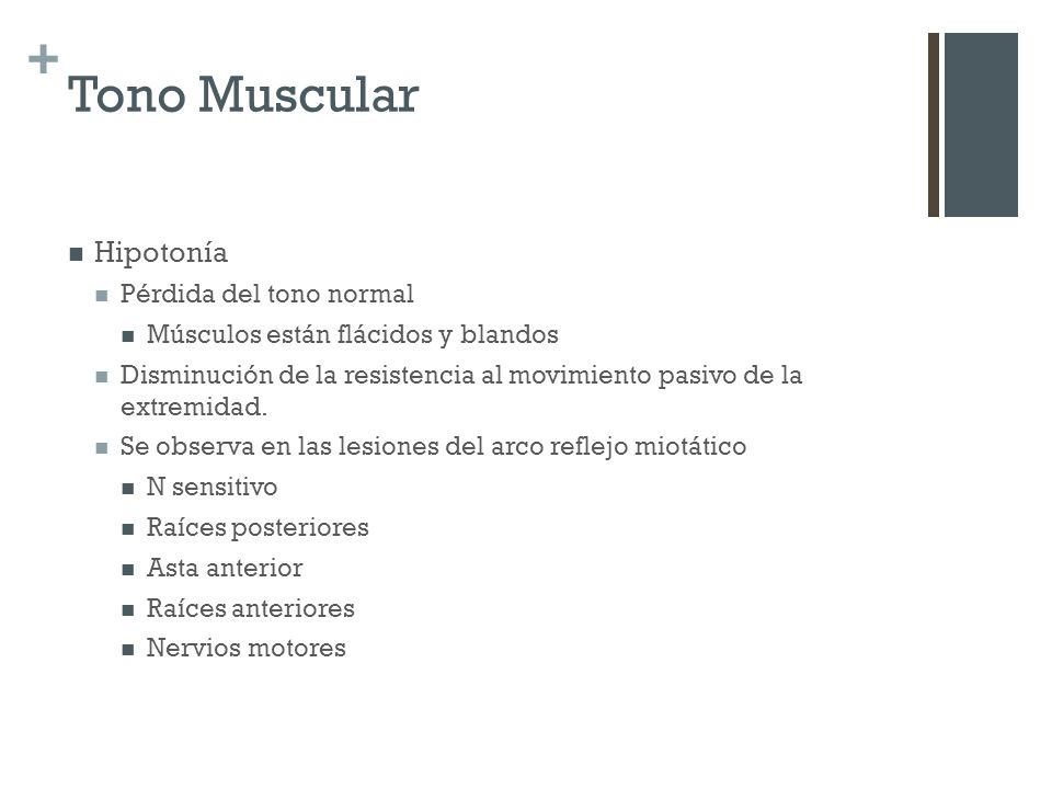Tono Muscular Hipotonía Pérdida del tono normal