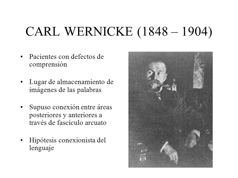 CARL WERNICKE (1848 – 1904) Pacientes con defectos de comprensión