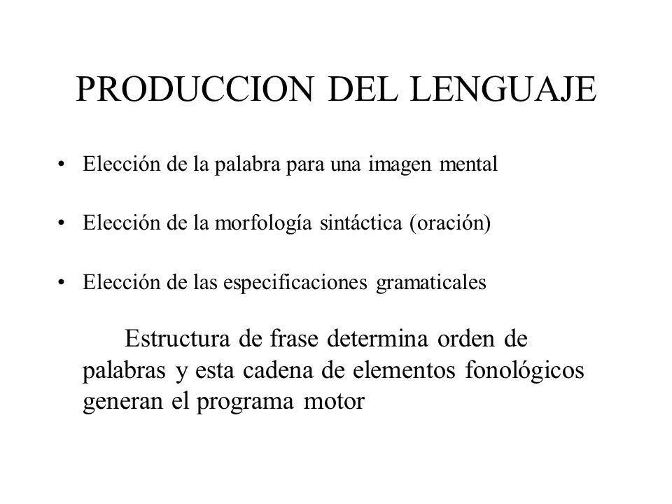 PRODUCCION DEL LENGUAJE