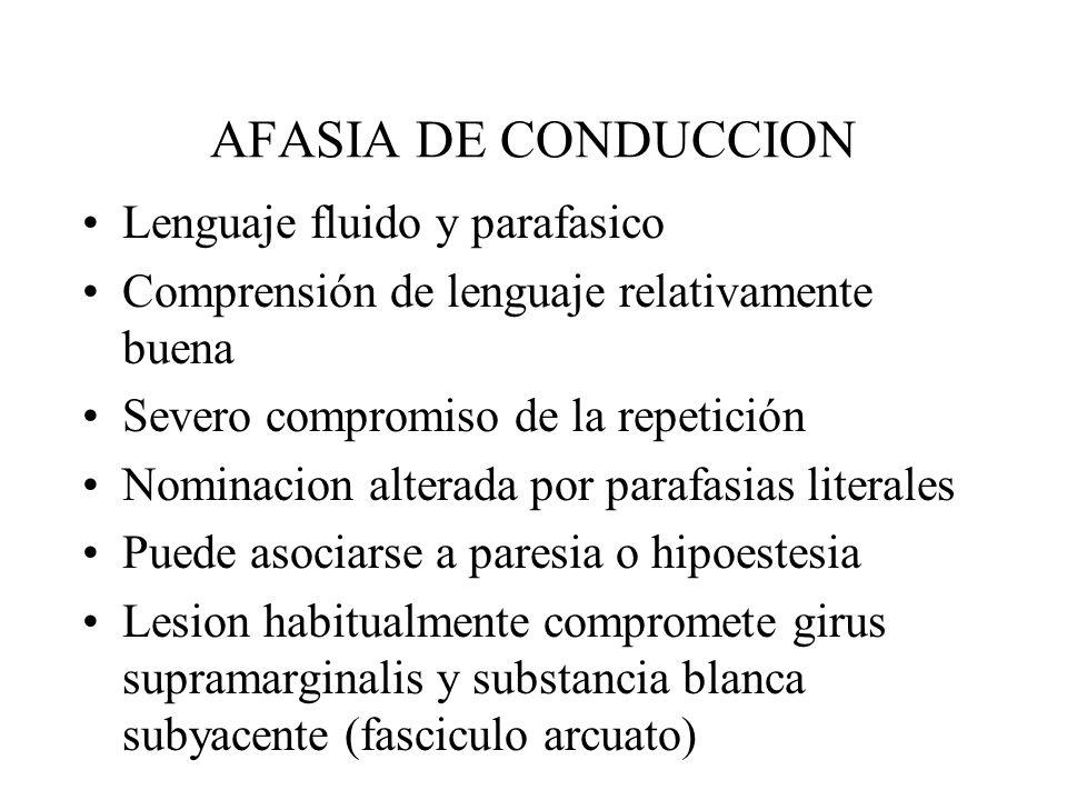 AFASIA DE CONDUCCION Lenguaje fluido y parafasico