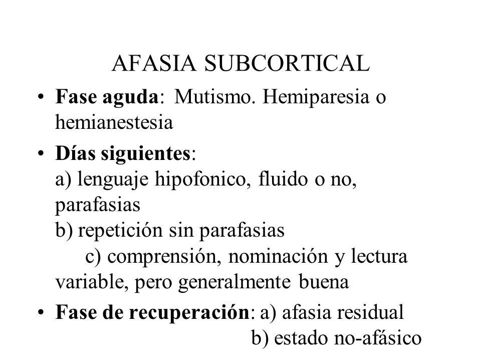 AFASIA SUBCORTICAL Fase aguda: Mutismo. Hemiparesia o hemianestesia