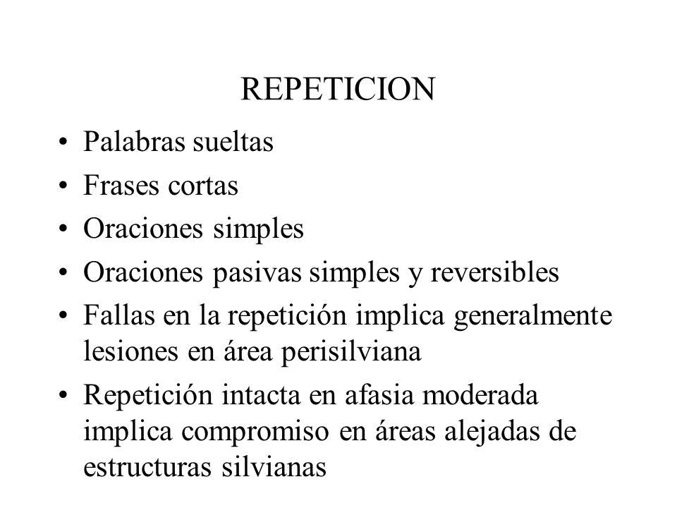 REPETICION Palabras sueltas Frases cortas Oraciones simples