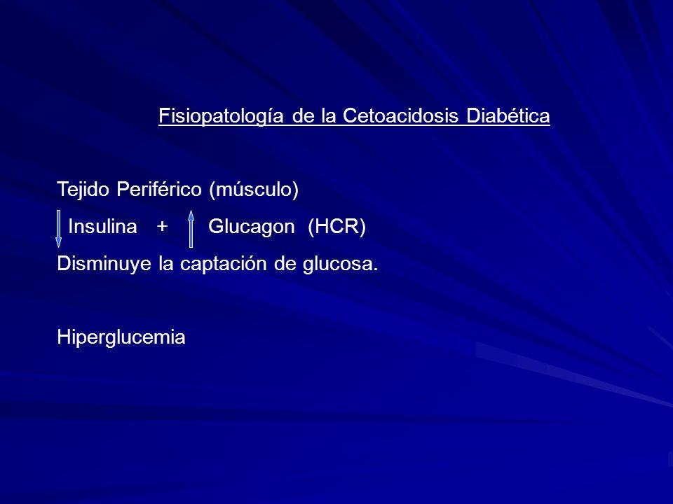 Fisiopatología de la Cetoacidosis Diabética