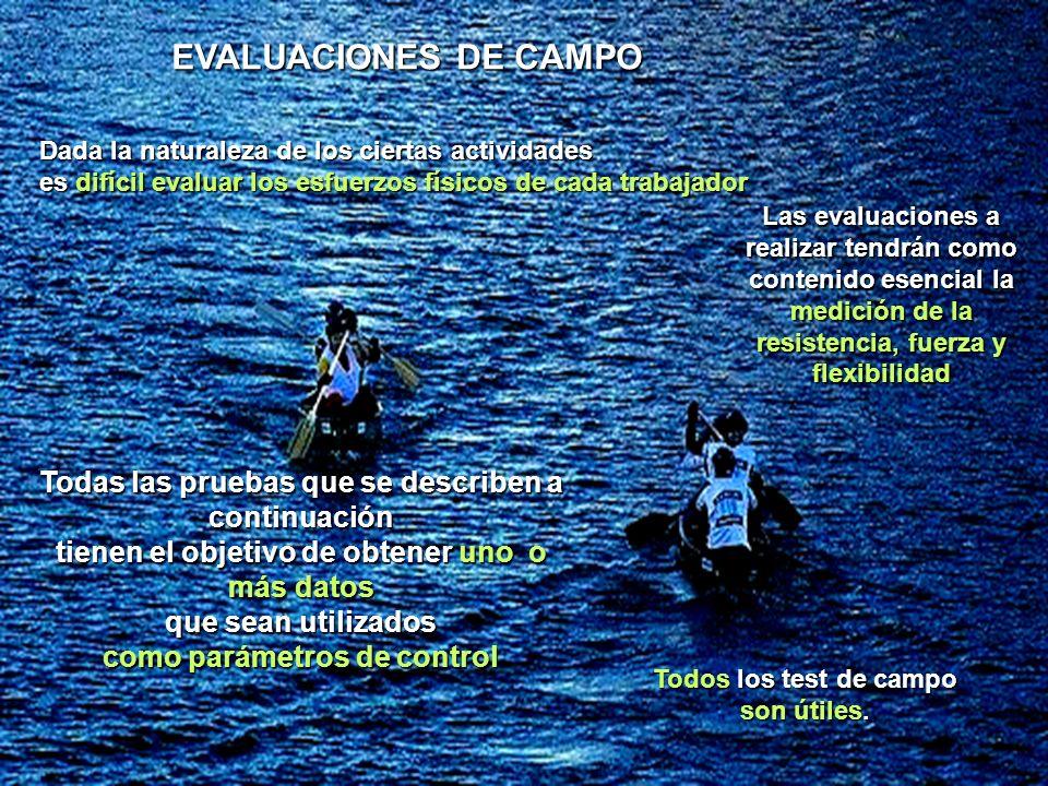 EVALUACIONES DE CAMPO Dada la naturaleza de los ciertas actividades. es difícil evaluar los esfuerzos físicos de cada trabajador.