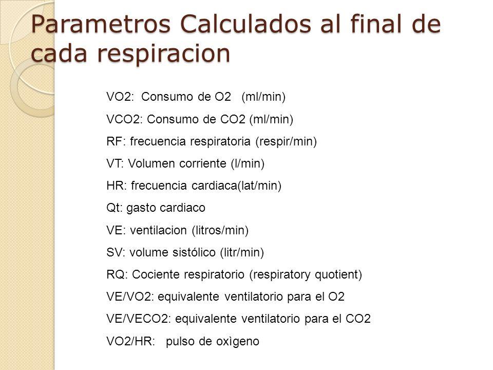 Parametros Calculados al final de cada respiracion