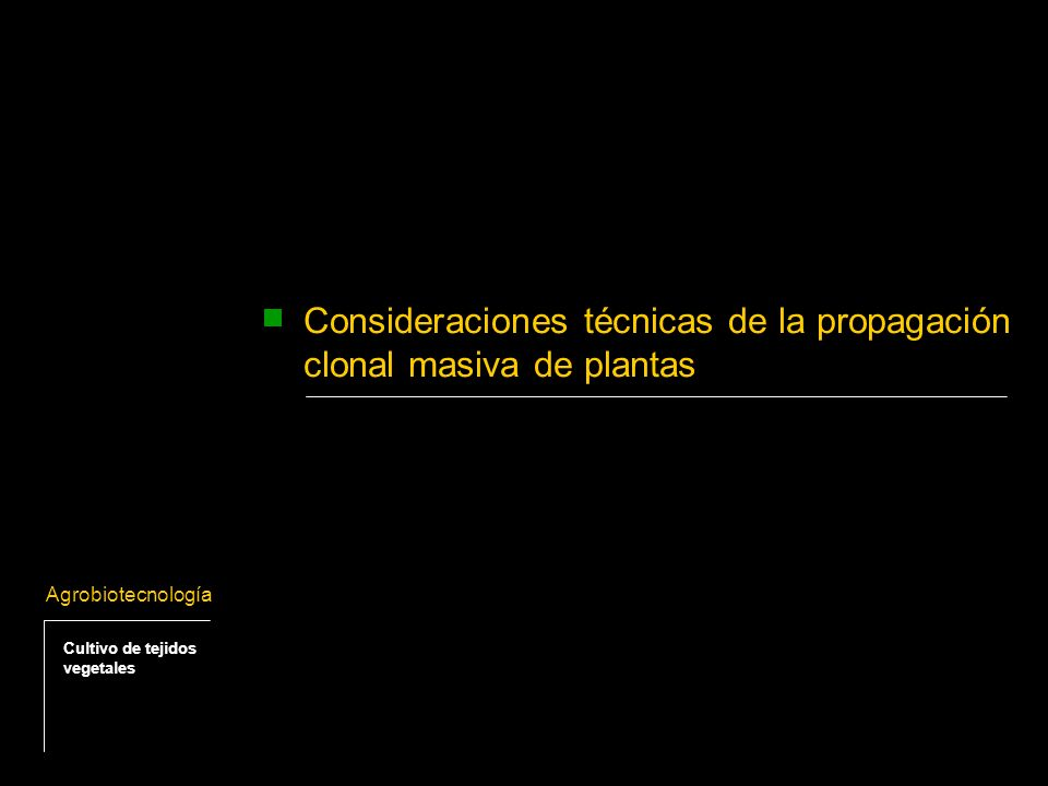 Consideraciones técnicas de la propagación clonal masiva de plantas