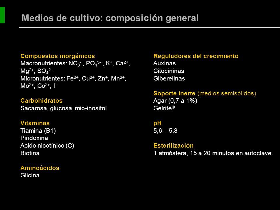 Medios de cultivo: composición general
