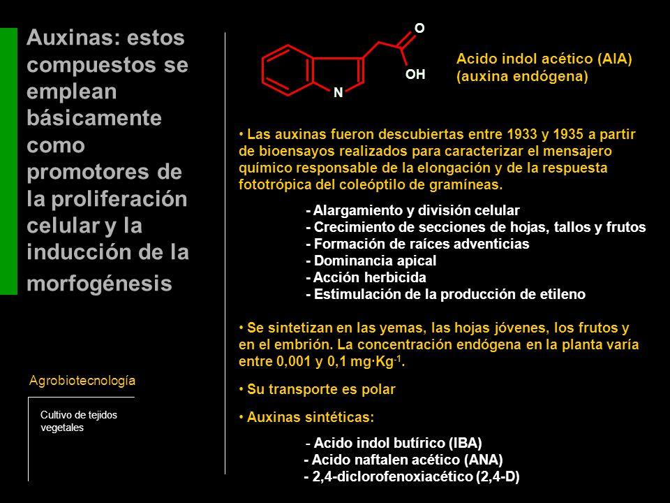 Auxinas: estos compuestos se emplean básicamente como promotores de la proliferación celular y la inducción de la morfogénesis