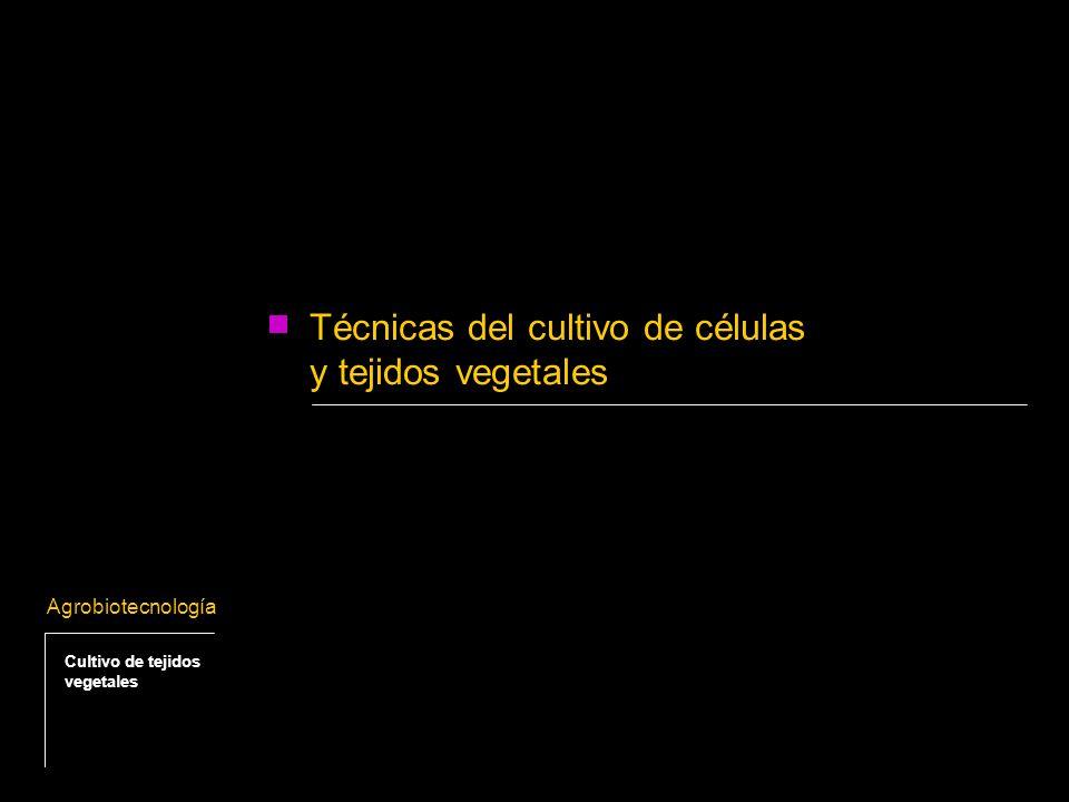 Técnicas del cultivo de células y tejidos vegetales