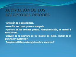 ACTIVACIÓN DE LOS RECEPTORES OPIODES: