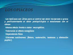 LOS OPIÁCEOS