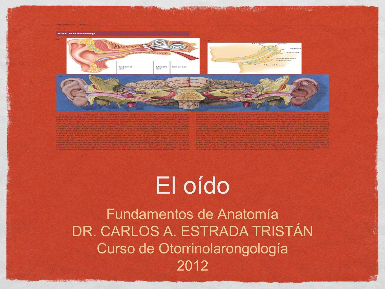 El oído Fundamentos de Anatomía DR. CARLOS A. ESTRADA TRISTÁN