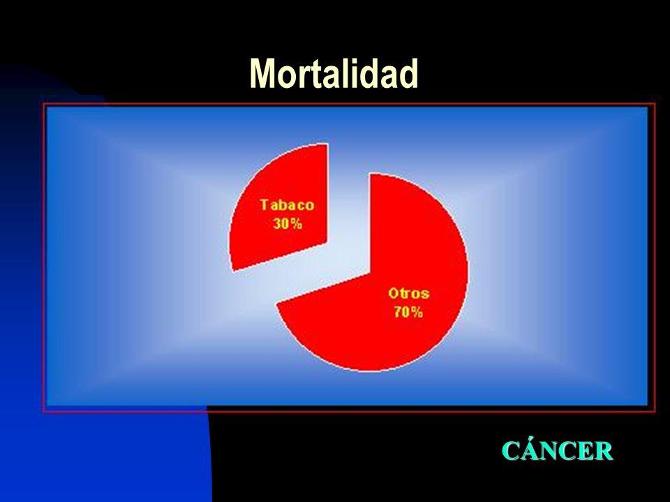 Mortalidad CÁNCER