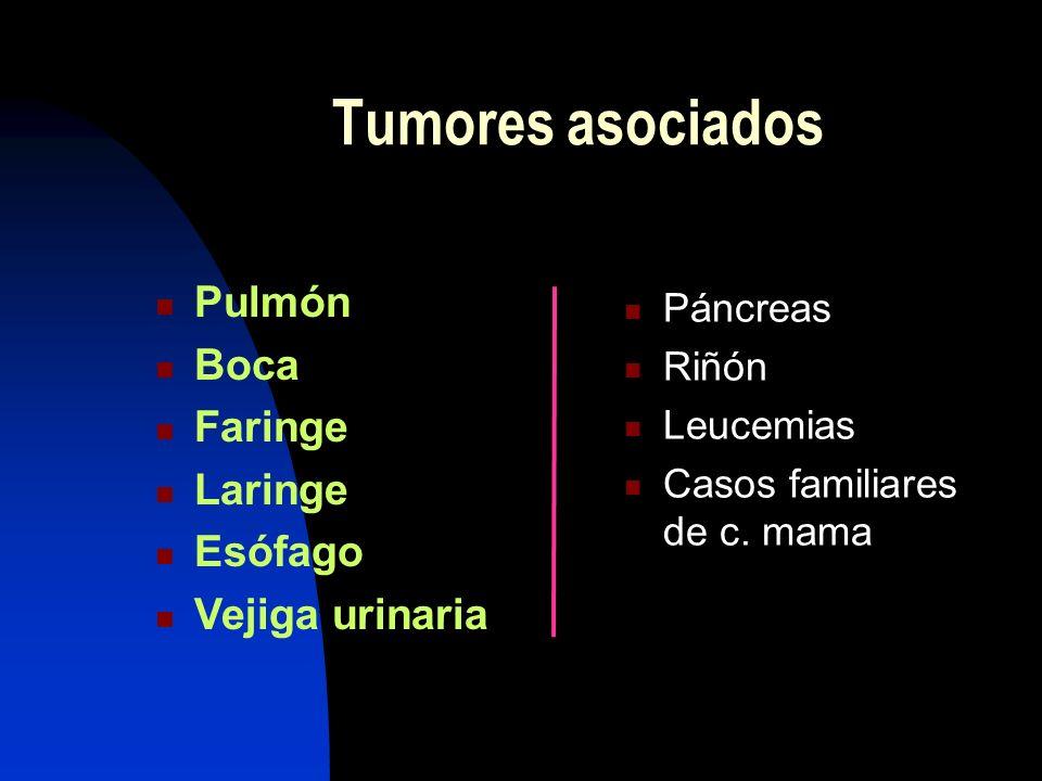 Tumores asociados Pulmón Boca Faringe Laringe Esófago Vejiga urinaria