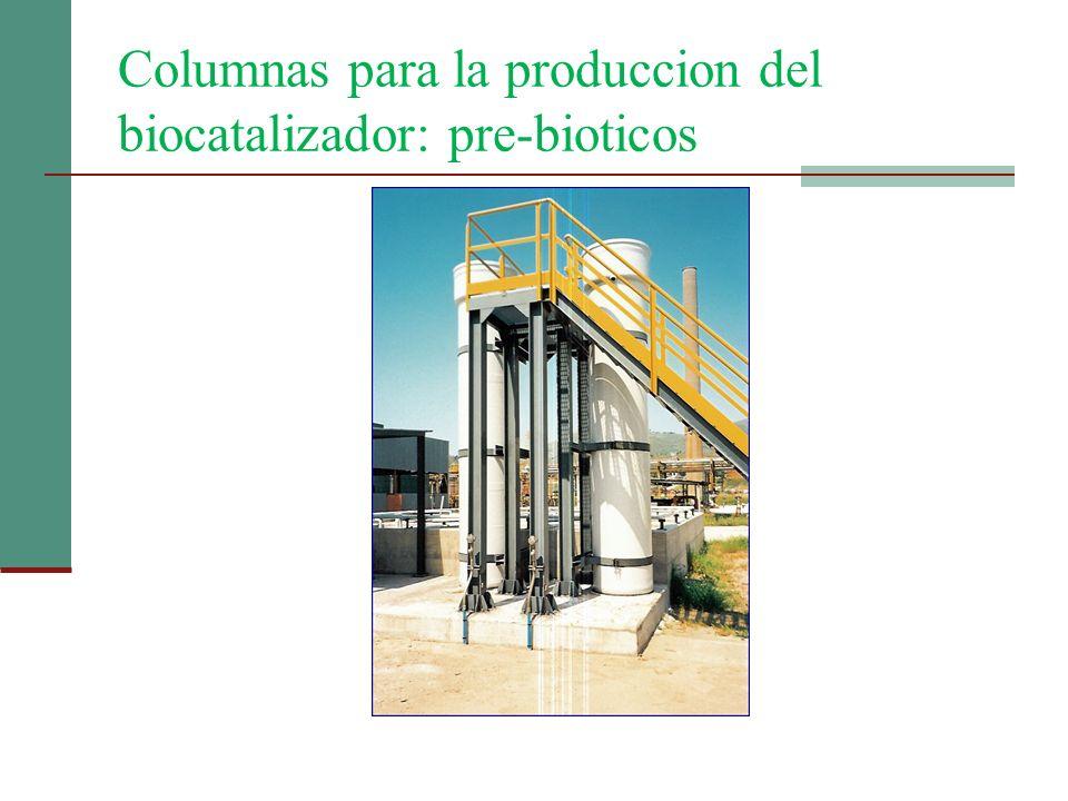Columnas para la produccion del biocatalizador: pre-bioticos