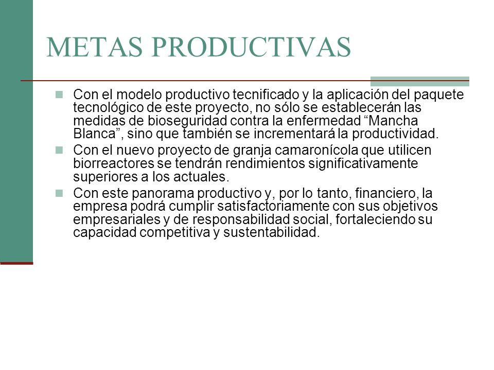 METAS PRODUCTIVAS