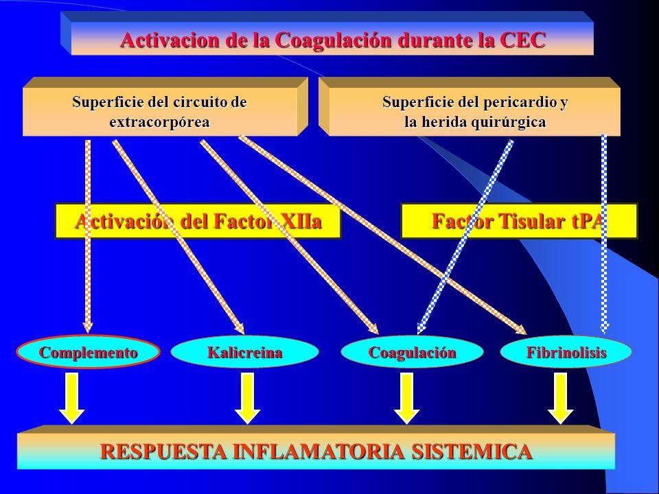 Activacion de la Coagulación durante la CEC