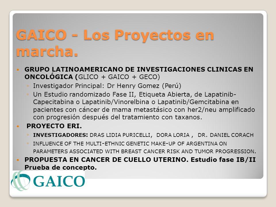 GAICO - Los Proyectos en marcha.