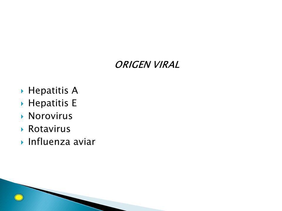 ORIGEN VIRAL Hepatitis A Hepatitis E Norovirus Rotavirus Influenza aviar